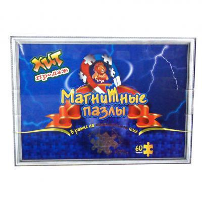 Пазлы магнитные (60 элементов)