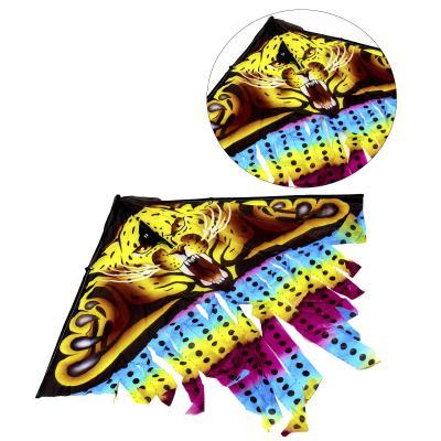 Воздушный змей, M 2894-1