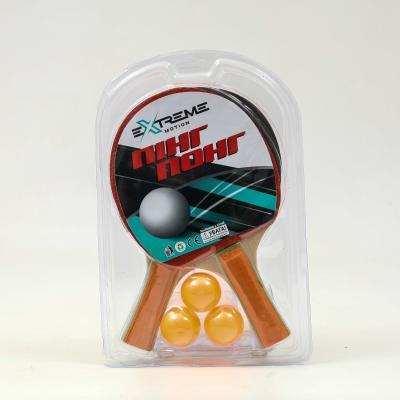 Теннис настольный, TT2109